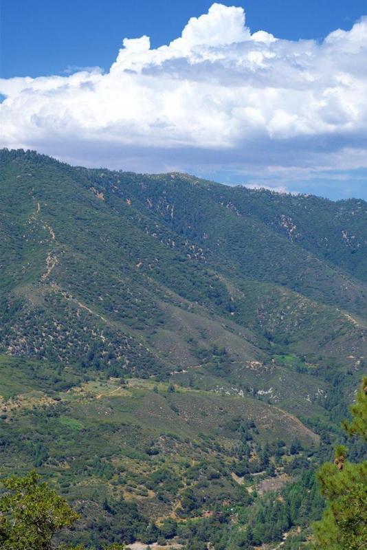 A Quaint Valley